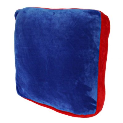 Blue with Red trim floor cushion